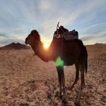 10 days in morocco itinerary